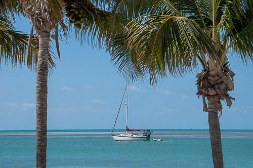 photo/floridakeys/thumb/dsc_4805.jpg